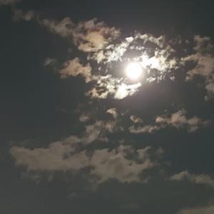 月が大きいね