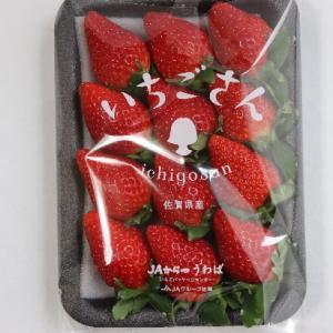 ベジフルインフォネット85号 比較的新しいイチゴ「いちごさん」「恋みのり」「きらぴ香」