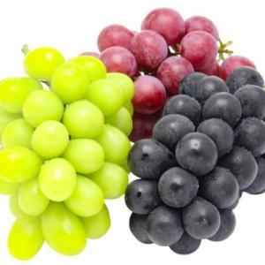 ベジフルインフォネット102号 あなたはどんなブドウを選びますか?