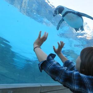 10年ぶりのとべ動物園