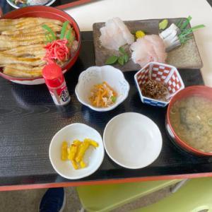鴨川市江見の「カネシチ水産」と南房総市の花嫁街道に行ってきました~!!