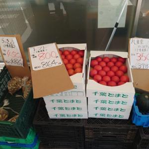 国吉でお野菜が安い!!!「ファミリーマート夷隅町国府台店」