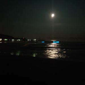 御宿海岸で「夜光虫」を見てきました♪