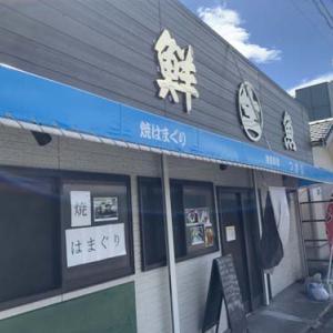 御宿町にある地魚料理店【つきじ】さんでランチしてきました!!