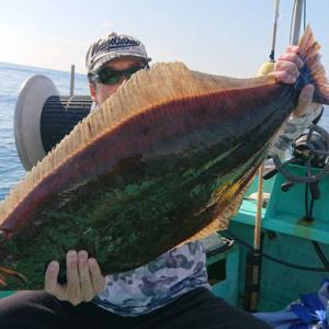 勝浦市漁師 BIGヒラメをゲットしました~♪