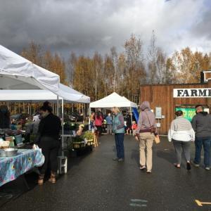 今年最後のファーマーズマーケット Tanana Valley Farmers Market