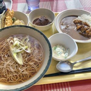 2019年11月18日(月)中央区役所 11F 職員食堂@新富町