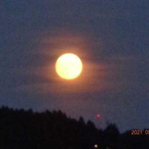 今夜は仲秋の名月と重なった満月、ROKAさんのビオラ・