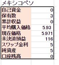 ◆2/19 【スポット購入】 1000ペソ