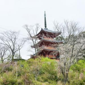 ぷらり奥山方広寺