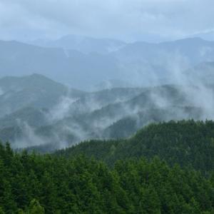 霧と雨の中でⅡ