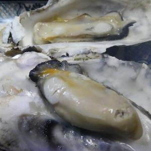 牡蠣、カキ、かき!レンチン5分でふっくら
