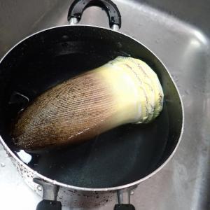 タケノコサラダチキン煮