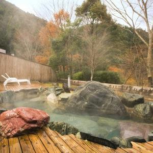 バードフィーダーのある温泉