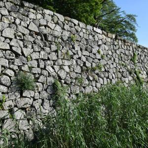 国宝・彦根城を歩く。 その8 <中堀~武家屋敷跡~京橋口>