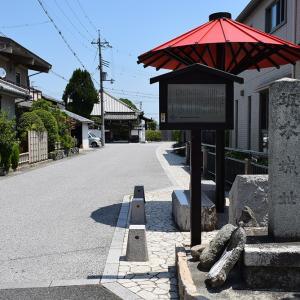 近江坂本城跡を歩く。 その3 <二ノ丸、三ノ丸>