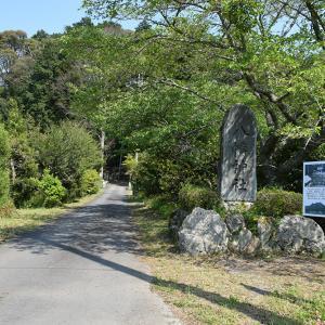 丹波三尾城ゆかりの東中八幡神社。