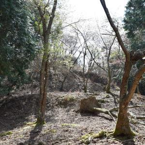 桜が満開の丹波友政城攻城記。 その2 <西郭・南郭>