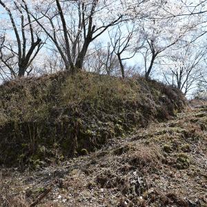 桜が満開の丹波友政城攻城記。 その3 <主郭・東郭>