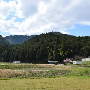 丹波岩本城跡とその下屋敷跡の妙法寺。