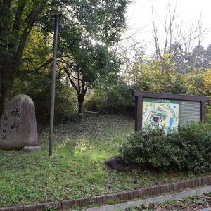 丹波国猪崎城跡を歩く。