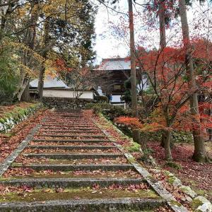 明智光秀が再興した須知城麓の玉雲寺。
