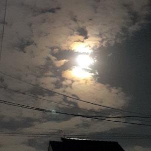 こんばんは!お月様。