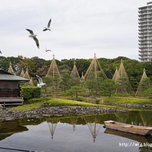 【名古屋観光】 白鳥庭園 / アスナル金山のクリスマスツリー