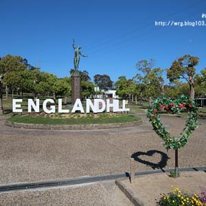 【淡路観光】 イングランドの丘 『 10万本のネモフィラ畑 』