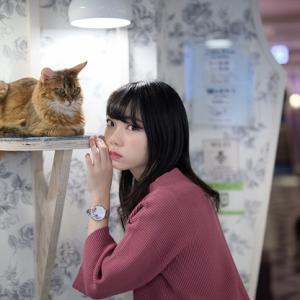 葵さん 猫カフェ撮影