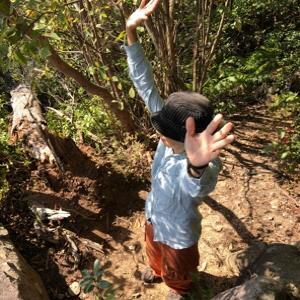 友人陶芸家と裏山ハイキング。