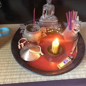 「聖なるズー」を読んで瞑想的な夜を過ごす。