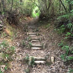 スポーツクラブ自粛で裏山ハイキング。