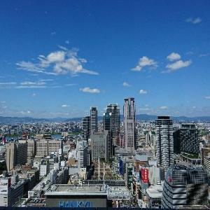 麦とろ自然生物語~阪急グランドビル29階