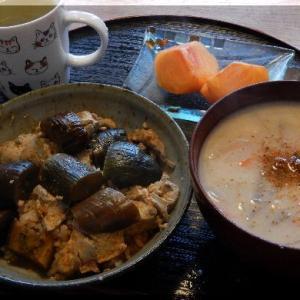 麻婆茄子丼と粕汁