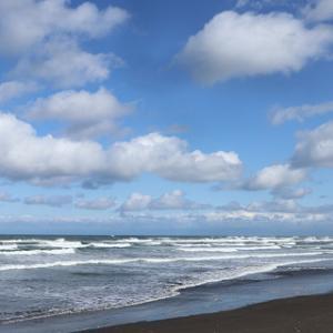 オホーツク海で蟹ごはんランチ♪