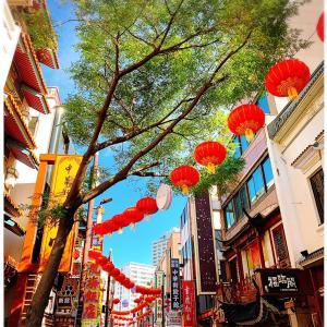孤独のグルメツアー ♡ 横浜中華街 南粤美食