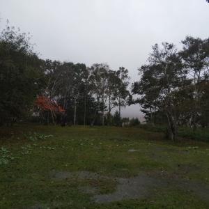 台風は無事に通過・・・