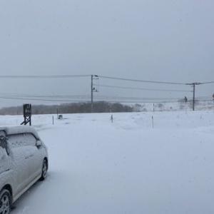 大雪なので、除雪の1日に