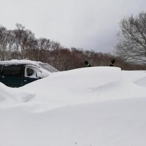 宿をオープンし1番の大雪でした!