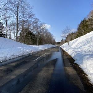 大雪の後の散歩は・・・