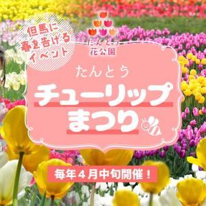 但東(たんとう)チューリップ祭り★4月10日~