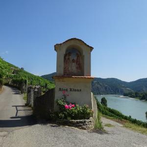 ワイン産地Wachauの斜面畑
