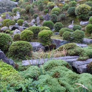 紅葉美しい東福寺(続き)