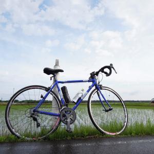 自転車通勤34~38回259Km カラスの巣
