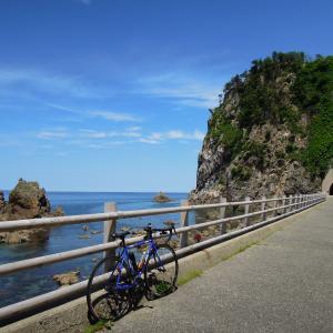笹川流れサイクリング160Km 海浜植物咲いた 村上の茶摘みも