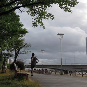 ジョギング2発 カワラナデシコ咲いた