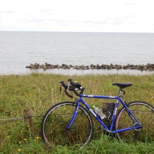 荒川河口、桃崎浜まで雨のサイクリング100Km