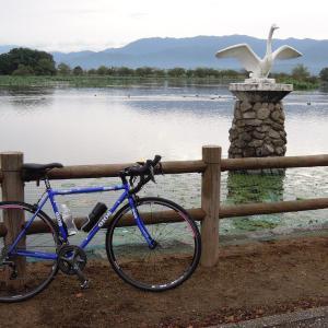 自転車通勤92~93回102Km 瓢湖にハクチョウ飛来