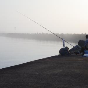 ジョギング 朝靄の新潟西港 村上市のヤマユリ